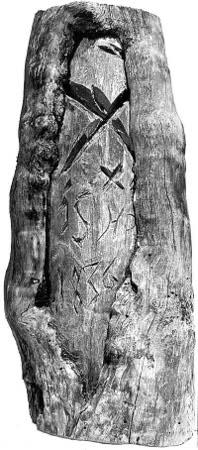 Karsikkopuu