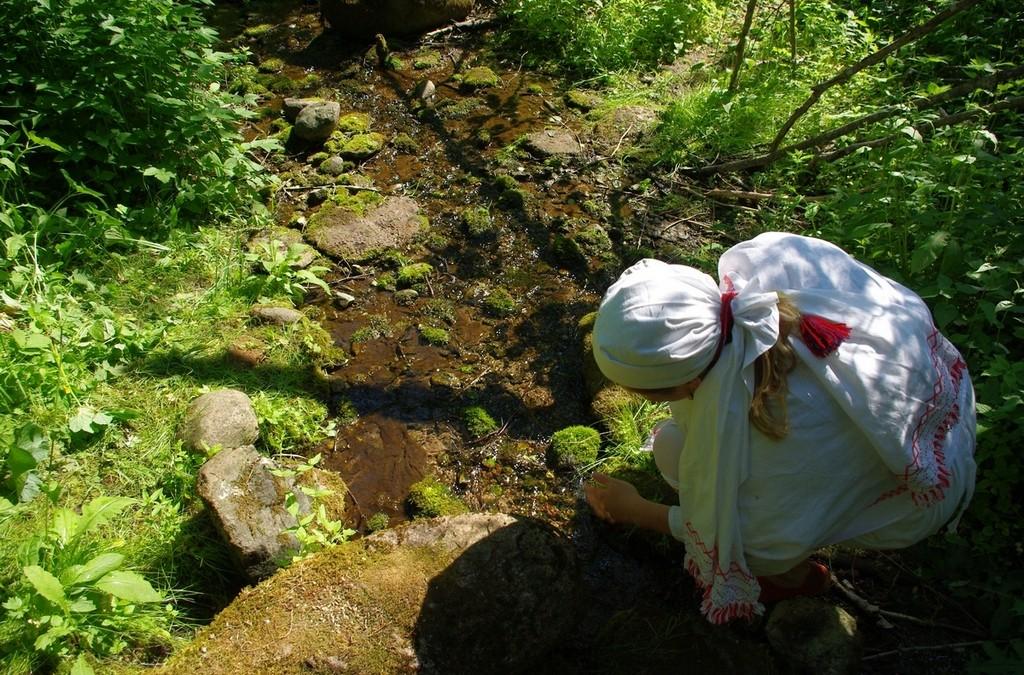Kokemuksia hiisien suojelusta Virossa – Haastattelussa Jüri Metssalu