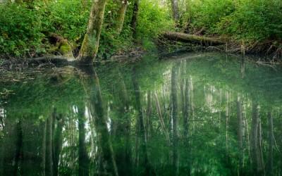 Uusi elokuva kuvaa virolaisia hiisiperinteitä