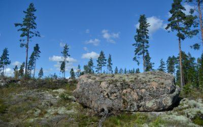 Hiisiä etsittiin pitkin maita ja metsiä