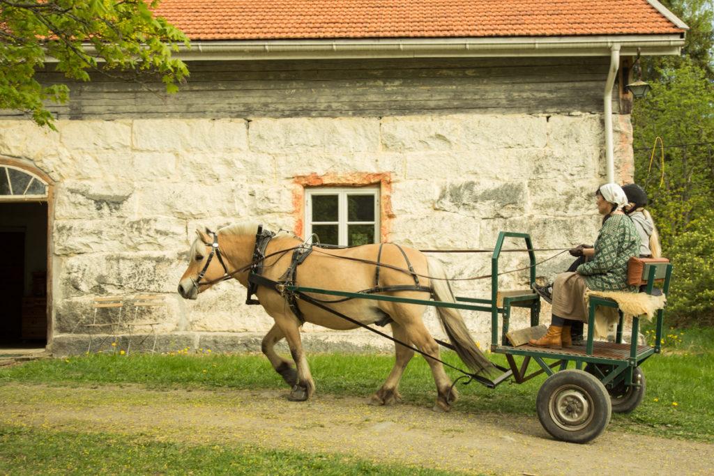 Hevoskärryillä ajelua