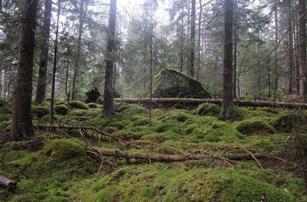 Suomen ensimmäisen hiisikyltin pystytys Pirkkalassa