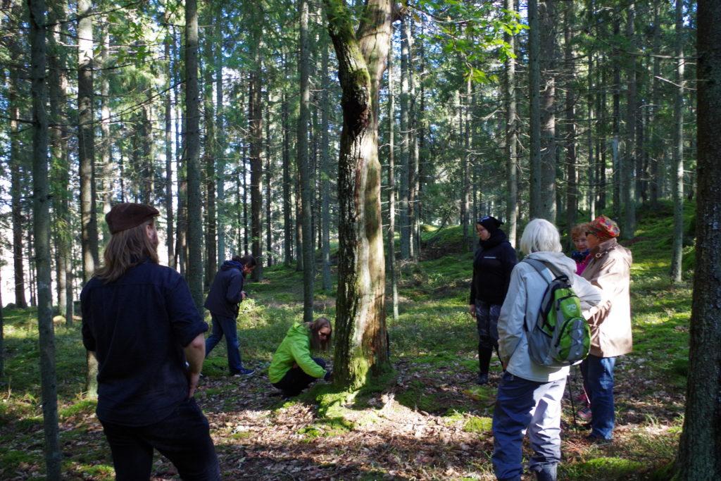 Seminaarissa esitettiin entistä tiivimpää yhteistyötä Suomen ja Viron tutkijoiden välillä.