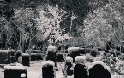 Suvun vartijat ja suojelijat – vainajausko rahvaanomaisessa kulttuurissa