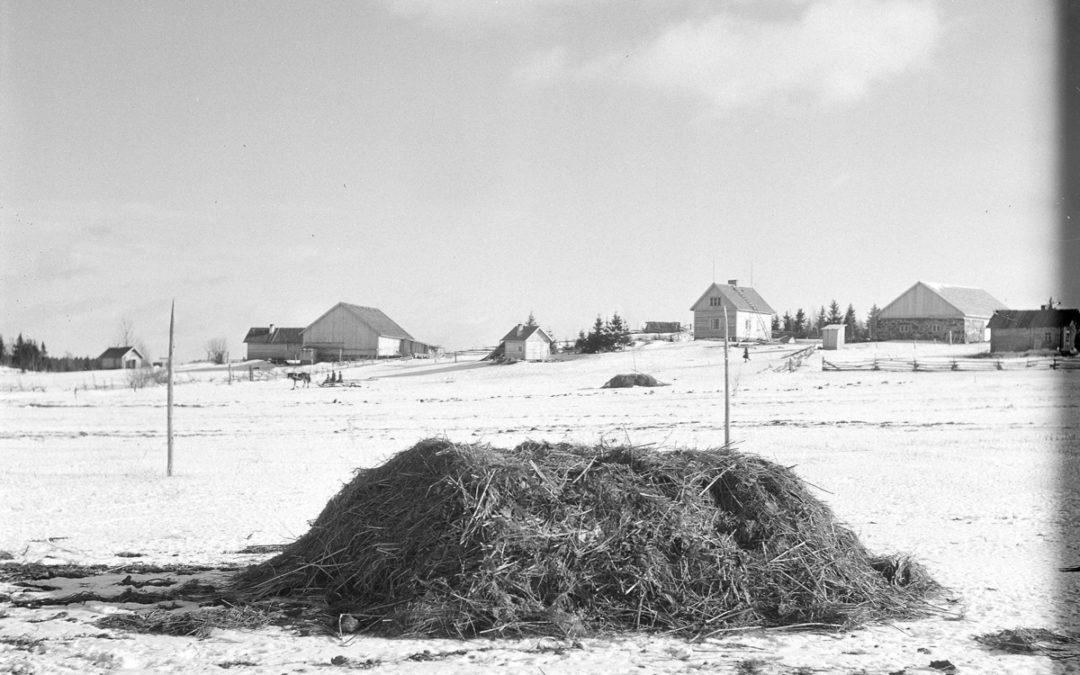 Tunkiosta huussiin ja kompostiin – entisajan jäteratkaisuista ja kierrätyksestä